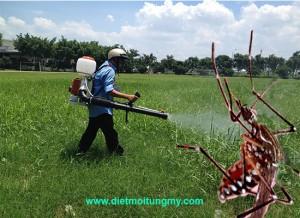 diệt muỗi tại hội an